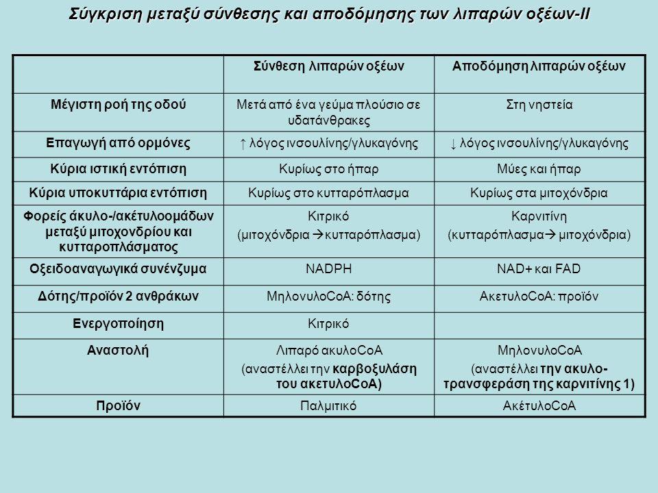Σύνθεση λιπαρών οξέωνΑποδόμηση λιπαρών οξέων Μέγιστη ροή της οδούΜετά από ένα γεύμα πλούσιο σε υδατάνθρακες Στη νηστεία Επαγωγή από ορμόνες↑ λόγος ινσουλίνης/γλυκαγόνης↓ λόγος ινσουλίνης/γλυκαγόνης Κύρια ιστική εντόπισηΚυρίως στο ήπαρΜύες και ήπαρ Κύρια υποκυττάρια εντόπισηΚυρίως στο κυτταρόπλασμαΚυρίως στα μιτοχόνδρια Φορείς άκυλο-/ακέτυλοομάδων μεταξύ μιτοχονδρίου και κυτταροπλάσματος Κιτρικό (μιτοχόνδρια  κυτταρόπλασμα) Καρνιτίνη (κυτταρόπλασμα  μιτοχόνδρια) Οξειδοαναγωγικά συνένζυμαΝΑDPHΝΑD+ και FAD Δότης/προϊόν 2 ανθράκωνΜηλονυλοCoA: δότηςΑκετυλοCoA: προϊόν ΕνεργοποίησηΚιτρικό ΑναστολήΛιπαρό ακυλοCoA (αναστέλλει την καρβοξυλάση του ακετυλοCoA) ΜηλονυλοCoA (αναστέλλει την ακυλο- τρανσφεράση της καρνιτίνης 1) ΠροϊόνΠαλμιτικόΑκέτυλοCoA Σύγκριση μεταξύ σύνθεσης και αποδόμησης των λιπαρών οξέων-ΙΙ