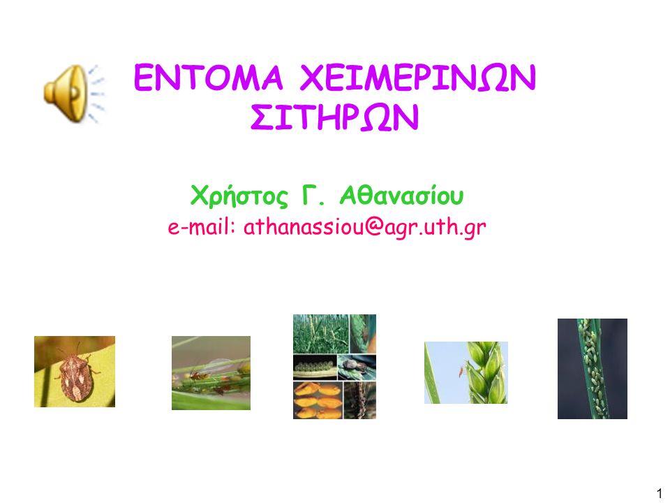 ΕΝΤΟΜΑ ΧΕΙΜΕΡΙΝΩΝ ΣΙΤΗΡΩΝ Χρήστος Γ. Αθανασίου e-mail: athanassiou@agr.uth.gr 1