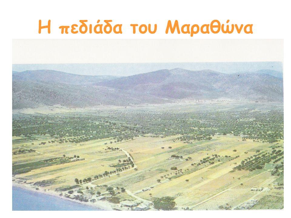 Η πεδιάδα του Μαραθώνα