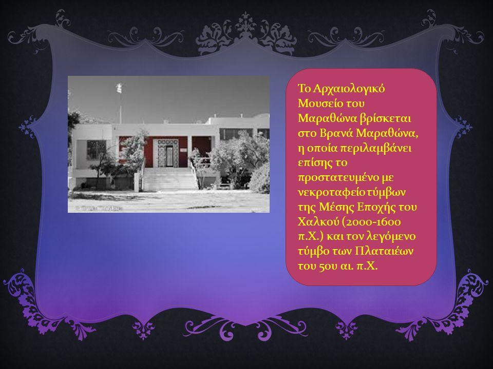 Το Αρχαιολογικό Μουσείο του Μαραθώνα βρίσκεται στο Βρανά Μαραθώνα, η οποία περιλαμβάνει επίσης το προστατευμένο με νεκροταφείο τύμβων της Μέσης Εποχής του Χαλκού (2000-1600 π.Χ.) και τον λεγόμενο τύμβο των Πλαταιέων του 5ου αι.