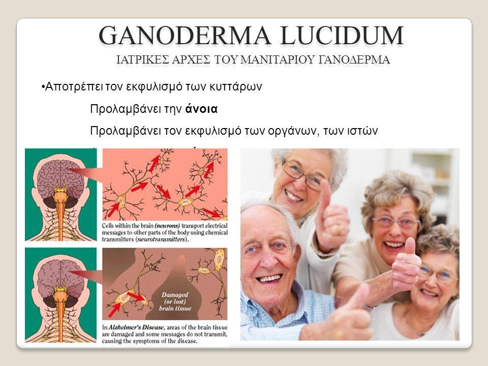 GANODERMA LUCIDUM ΙΑΤΡΙΚΕΣ ΑΡΧΕΣ ΤΟΥ ΜΑΝΙΤΑΡΙΟΥ ΓΑΝΟΔΕΡΜΑ Αποτρέπει τον εκφυλισμό των κυττάρων Προλαμβάνει την άνοια Προλαμβάνει τον εκφυλισμό των οργάνων, των ιστών Δρα αντιγηραντικά