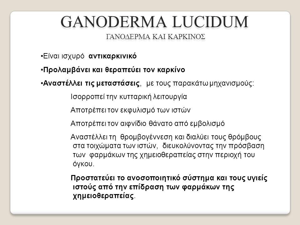 GANODERMA LUCIDUM ΓΑΝΟΔΕΡΜΑ ΚΑΙ ΚΑΡΚΙΝΟΣ Είναι ισχυρό αντικαρκινικό Προλαμβάνει και θεραπεύει τον καρκίνο Αναστέλλει τις μεταστάσεις, με τους παρακάτω μηχανισμούς: Ισορροπεί την κυτταρική λειτουργία Αποτρέπει τον εκφυλισμό των ιστών Αποτρέπει τον αιφνίδιο θάνατο από εμβολισμό Αναστέλλει τη θρομβογέννεση και διαλύει τους θρόμβους στα τοιχώματα των ιστών, διευκολύνοντας την πρόσβαση των φαρμάκων της χημειοθεραπείας στην περιοχή του όγκου.