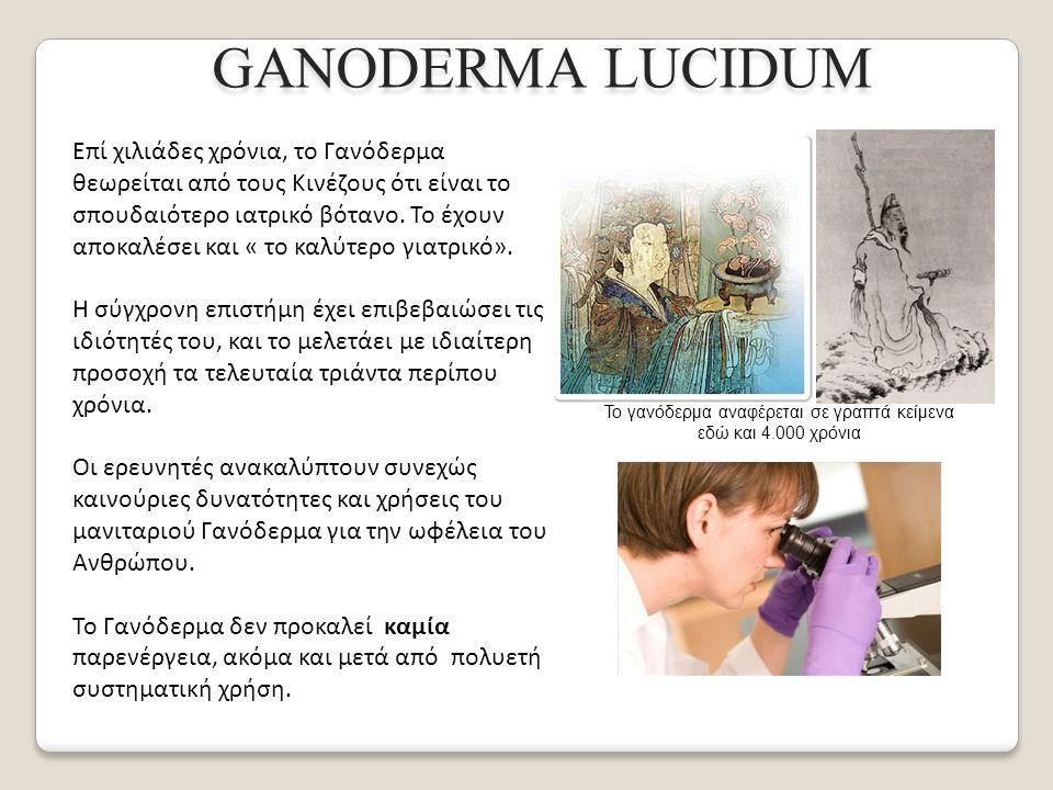 Επί χιλιάδες χρόνια, το Γανόδερμα θεωρείται από τους Κινέζους ότι είναι το σπουδαιότερο ιατρικό βότανο.
