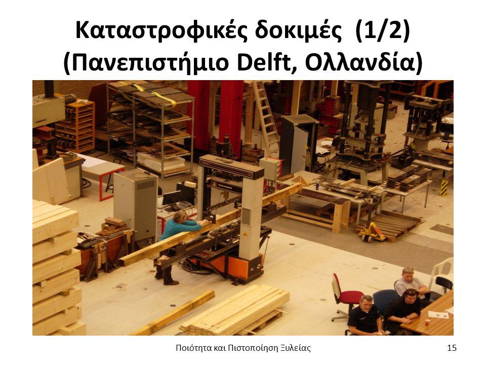 Καταστροφικές δοκιμές (1/2) (Πανεπιστήμιο Delft, Ολλανδία) Ποιότητα και Πιστοποίηση Ξυλείας15