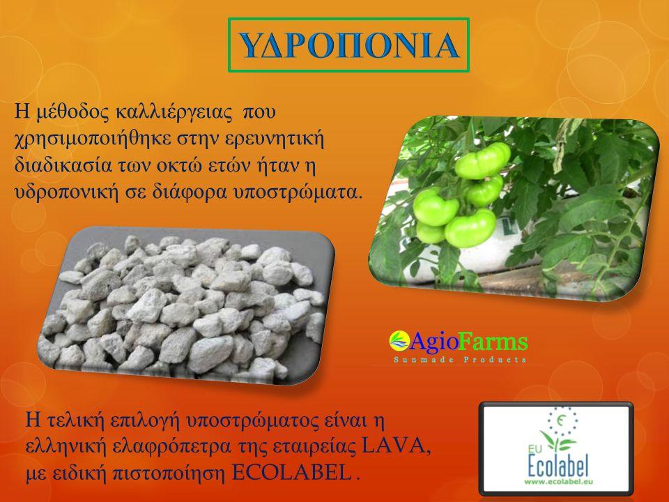 Η μέθοδος καλλιέργειας που χρησιμοποιήθηκε στην ερευνητική διαδικασία των οκτώ ετών ήταν η υδροπονική σε διάφορα υποστρώματα.