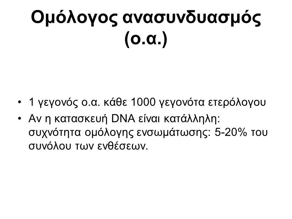 Ομόλογος ανασυνδυασμός (ο.α.) 1 γεγονός ο.α.