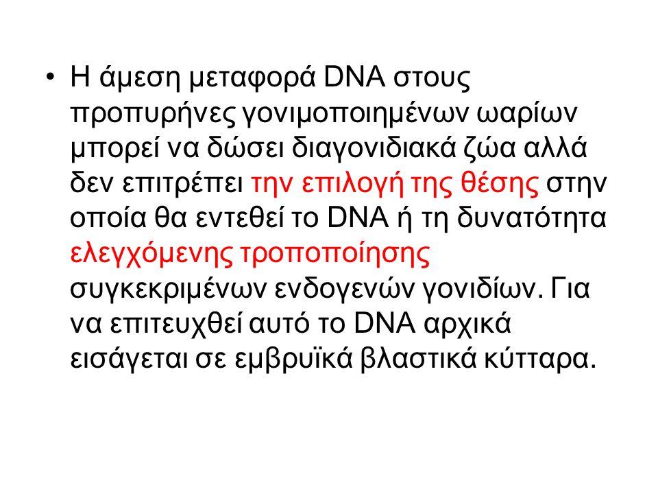 Η άμεση μεταφορά DNA στους προπυρήνες γονιμοποιημένων ωαρίων μπορεί να δώσει διαγονιδιακά ζώα αλλά δεν επιτρέπει την επιλογή της θέσης στην οποία θα εντεθεί το DNA ή τη δυνατότητα ελεγχόμενης τροποποίησης συγκεκριμένων ενδογενών γονιδίων.