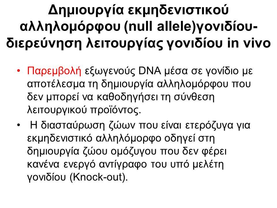 Ειδικές θέσεις ανασυνδυασμού (loxP) Ένζυμο που καταλύει τον ανασυνδυασμό μεταξύ τους- Cre.
