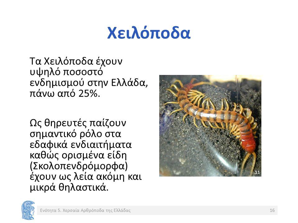 Χειλόποδα Τα Χειλόποδα έχουν υψηλό ποσοστό ενδημισμού στην Ελλάδα, πάνω από 25%.