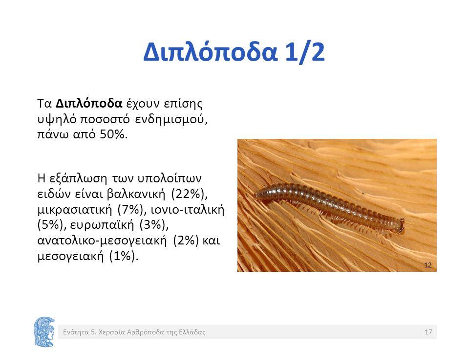 Διπλόποδα 1/2 Τα Διπλόποδα έχουν επίσης υψηλό ποσοστό ενδημισμού, πάνω από 50%.