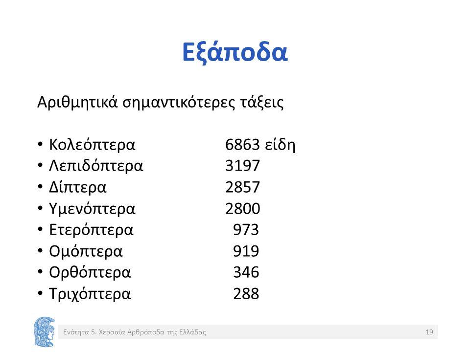 Εξάποδα Αριθμητικά σημαντικότερες τάξεις Κολεόπτερα6863 είδη Λεπιδόπτερα3197 Δίπτερα2857 Υμενόπτερα2800 Ετερόπτερα 973 Ομόπτερα 919 Ορθόπτερα 346 Τριχόπτερα 288 Ενότητα 5.