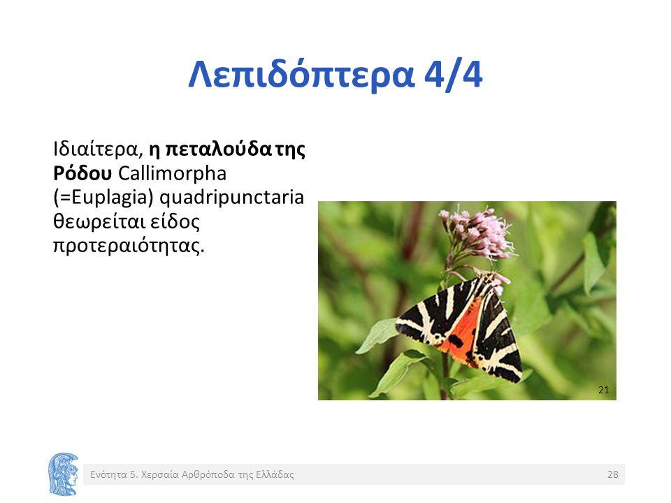 Λεπιδόπτερα 4/4 Ιδιαίτερα, η πεταλούδα της Ρόδου Callimorpha (=Euplagia) quadripunctaria θεωρείται είδος προτεραιότητας.