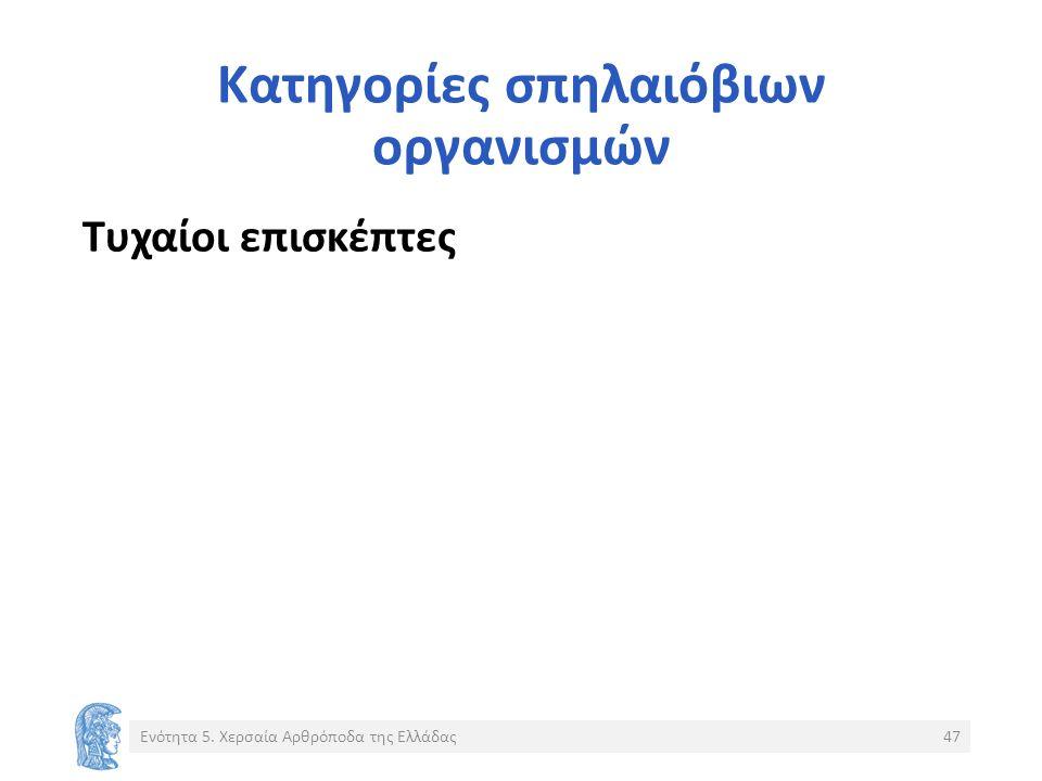 Κατηγορίες σπηλαιόβιων οργανισμών Τυχαίοι επισκέπτες Ενότητα 5. Χερσαία Αρθρόποδα της Ελλάδας47