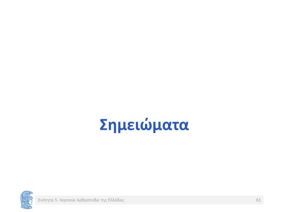 Σημειώματα Ενότητα 5. Χερσαία Αρθρόποδα της Ελλάδας61