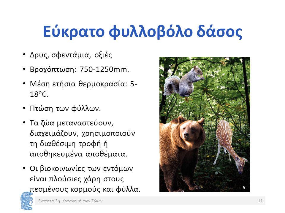 Εύκρατο φυλλοβόλο δάσος Δρυς, σφεντάμια, οξιές Βροχόπτωση: 750-1250mm.