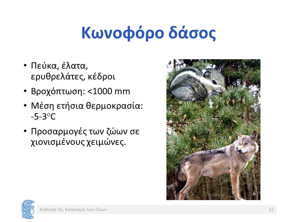 Κωνοφόρο δάσος Πεύκα, έλατα, ερυθρελάτες, κέδροι Βροχόπτωση: <1000 mm Μέση ετήσια θερμοκρασία: -5-3 ο C Προσαρμογές των ζώων σε χιονισμένους χειμώνες.