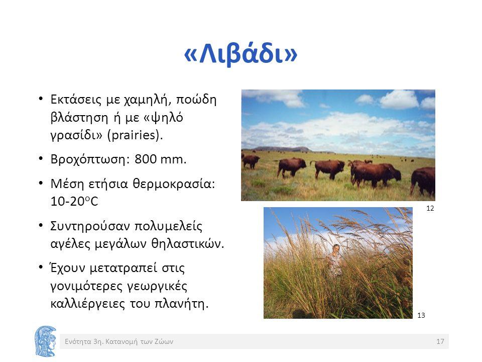 «Λιβάδι» Εκτάσεις με χαμηλή, ποώδη βλάστηση ή με «ψηλό γρασίδι» (prairies).