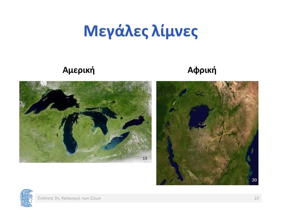 Μεγάλες λίμνες ΑμερικήΑφρική Ενότητα 3η. Κατανομή των Ζώων23 19 20