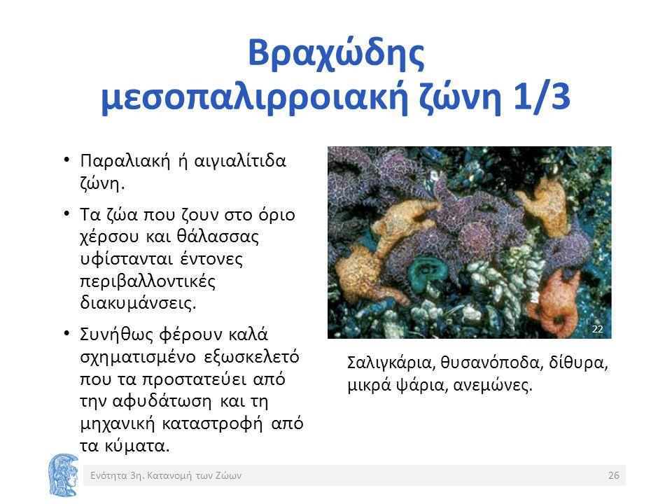 Βραχώδης μεσοπαλιρροιακή ζώνη 1/3 Παραλιακή ή αιγιαλίτιδα ζώνη.