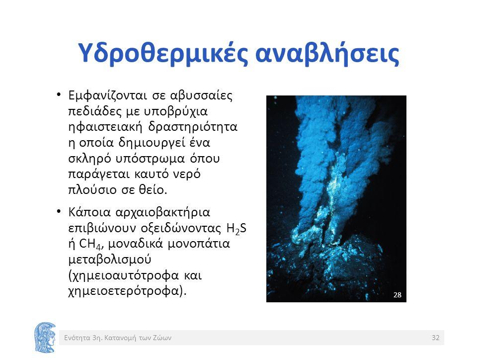Υδροθερμικές αναβλήσεις Εμφανίζονται σε αβυσσαίες πεδιάδες με υποβρύχια ηφαιστειακή δραστηριότητα η οποία δημιουργεί ένα σκληρό υπόστρωμα όπου παράγεται καυτό νερό πλούσιο σε θείο.