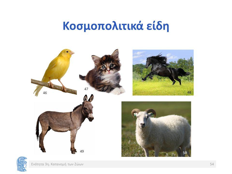 Κοσμοπολιτικά είδη Ενότητα 3η. Κατανομή των Ζώων54 46 47 48 49 50