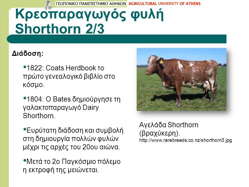 Κρεοπαραγωγός φυλή Shorthorn 2/3 Διάδοση: 1822: Coats Herdbook το πρώτο γενεαλογικό βιβλίο στο κόσμο.