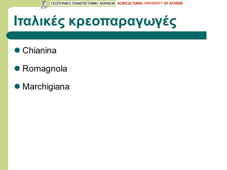 Ιταλικές κρεοπαραγωγές Chianina Romagnola Marchigiana