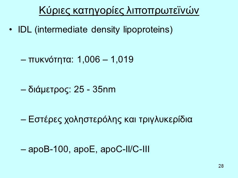 28 Κύριες κατηγορίες λιποπρωτεϊνών IDL (intermediate density lipoproteins) –πυκνότητα: 1,006 – 1,019 –διάμετρος: 25 - 35nm –Εστέρες χοληστερόλης και τριγλυκερίδια –apoB-100, apoE, apoC-II/C-III