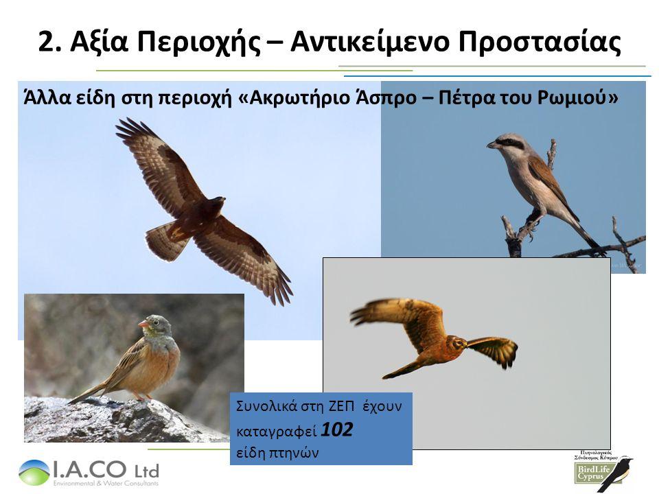 Άλλα είδη στη περιοχή «Ακρωτήριο Άσπρο – Πέτρα του Ρωμιού» Συνολικά στη ΖΕΠ έχουν καταγραφεί 102 είδη πτηνών 2. Αξία Περιοχής – Αντικείμενο Προστασίας
