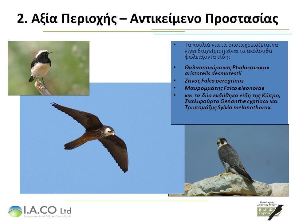 Τα πουλιά για τα οποία χρειάζεται να γίνει διαχείριση είναι τα ακόλουθα φωλεάζοντα είδη: Θαλασσοκόρακας Phalacrocorax aristotelis desmarestii Ζάνος Falco peregrinus Μαυρομμάτης Falco eleonorae και τα δύο ενδύθηκα είδη της Κύπρο, Σκαλιφούρτα Oenanthe cypriaca και Τρυπομάζης Sylvia melanothorax.