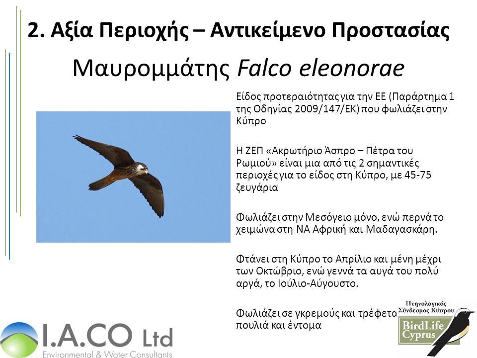Μαυρομμάτης Falco eleonorae Είδος προτεραιότητας για την ΕΕ (Παράρτημα 1 της Οδηγίας 2009/147/ΕΚ) που φωλιάζει στην Κύπρο Η ΖΕΠ «Ακρωτήριο Άσπρο – Πέτρα του Ρωμιού» είναι μια από τις 2 σημαντικές περιοχές για το είδος στη Κύπρο, με 45-75 ζευγάρια Φωλιάζει στην Μεσόγειο μόνο, ενώ περνά το χειμώνα στη ΝΑ Αφρική και Μαδαγασκάρη.