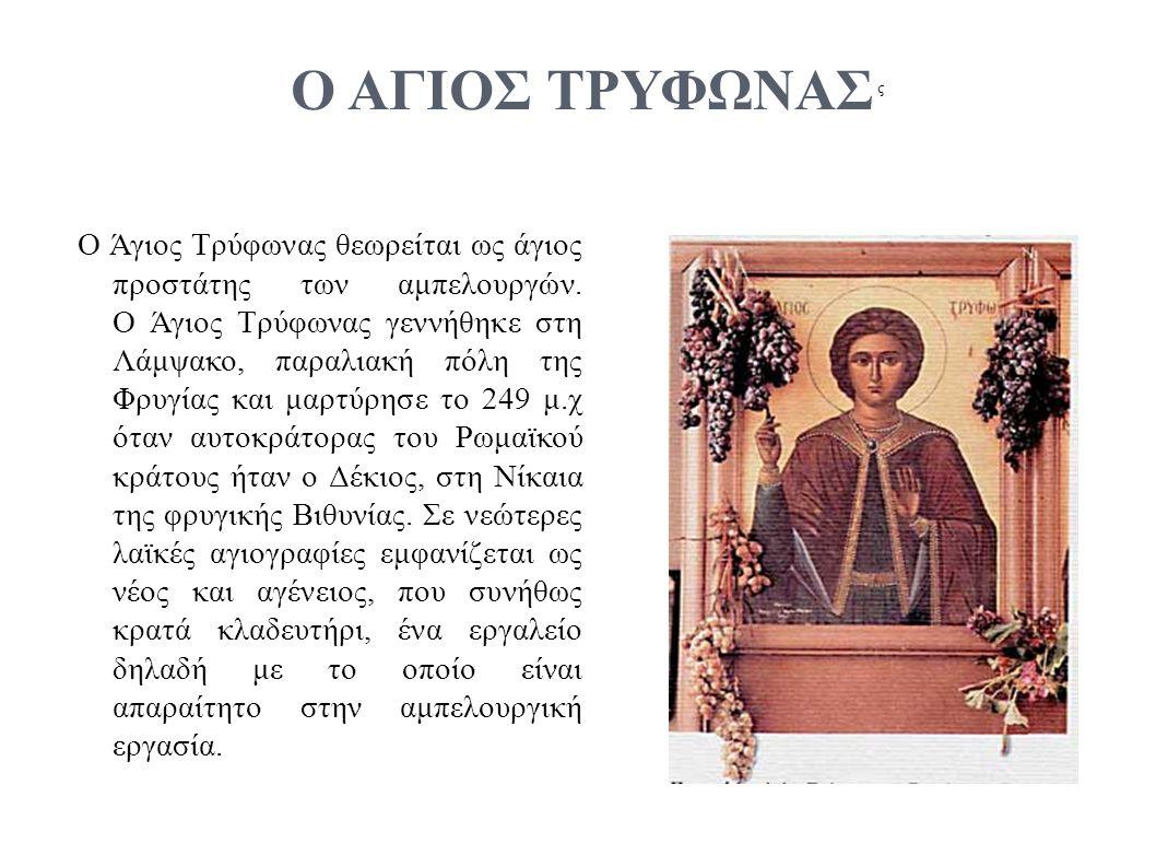 ς Ο ΑΓΙΟΣ ΤΡΥΦΩΝΑΣ Ο Άγιος Τρύφωνας θεωρείται ως άγιος προστάτης των αμπελουργών.