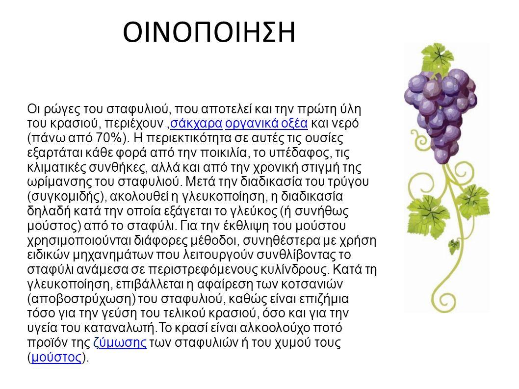 ΟΙΝΟΠΟΙΗΣΗ Οι ρώγες του σταφυλιού, που αποτελεί και την πρώτη ύλη του κρασιού, περιέχουν,σάκχαρα οργανικά οξέα και νερό (πάνω από 70%).