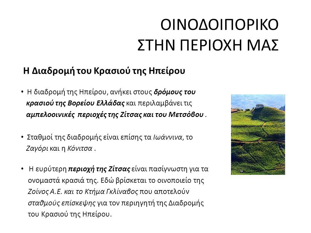 ΟΙΝΟΔΟΙΠΟΡΙΚΟ ΣΤΗΝ ΠΕΡΙΟΧΗ ΜΑΣ Η Διαδρομή του Κρασιού της Ηπείρου Η διαδρομή της Ηπείρου, ανήκει στους δρόμους του κρασιού της Βορείου Ελλάδας και περιλαμβάνει τις αμπελοοινικές περιοχές της Ζίτσας και του Μετσόβου.