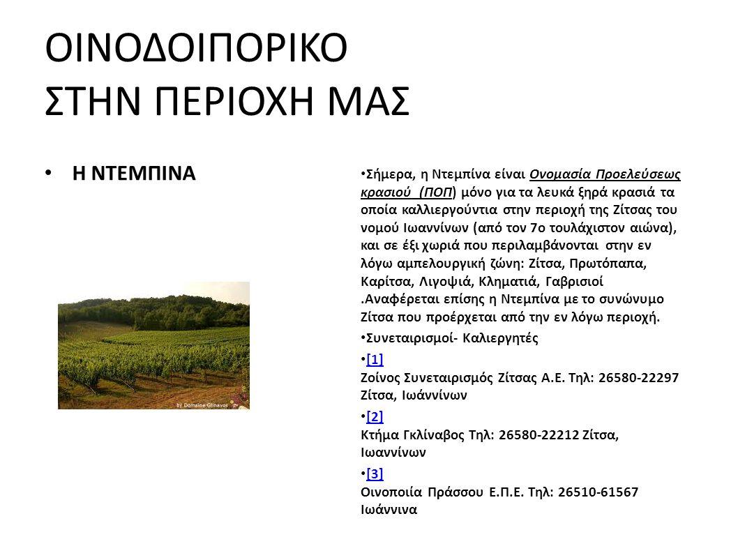 ΟΙΝΟΔΟΙΠΟΡΙΚΟ ΣΤΗΝ ΠΕΡΙΟΧΗ ΜΑΣ Η ΝΤΕΜΠΙΝΑ Σήμερα, η Ντεμπίνα είναι Ονομασία Προελεύσεως κρασιού (ΠΟΠ) μόνο για τα λευκά ξηρά κρασιά τα οποία καλλιεργούντια στην περιοχή της Ζίτσας του νομού Ιωαννίνων (από τον 7ο τουλάχιστον αιώνα), και σε έξι χωριά που περιλαμβάνονται στην εν λόγω αμπελουργική ζώνη: Ζίτσα, Πρωτόπαπα, Καρίτσα, Λιγοψιά, Κληματιά, Γαβρισιοί.Αναφέρεται επίσης η Ντεμπίνα με το συνώνυμο Ζίτσα που προέρχεται από την εν λόγω περιοχή.