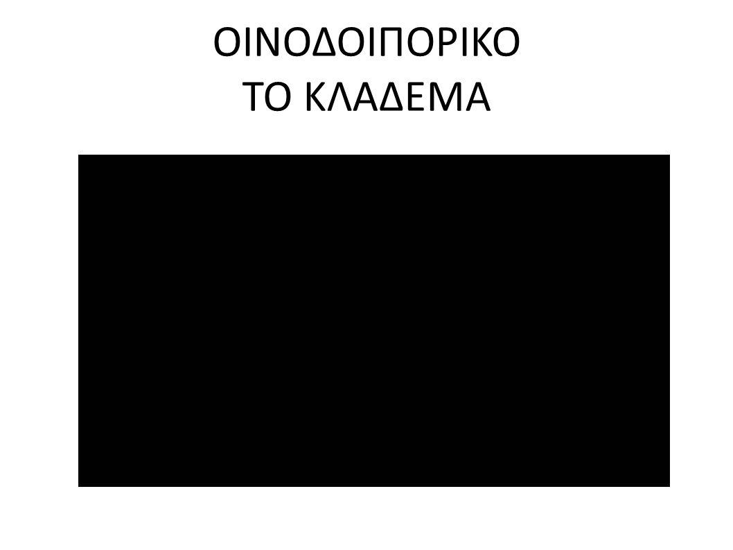 ΟΙΝΟΔΟΙΠΟΡΙΚΟ ΤΟ ΚΛΑΔΕΜΑ