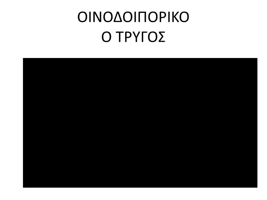 ΟΙΝΟΔΟΙΠΟΡΙΚΟ Ο ΤΡΥΓΟΣ