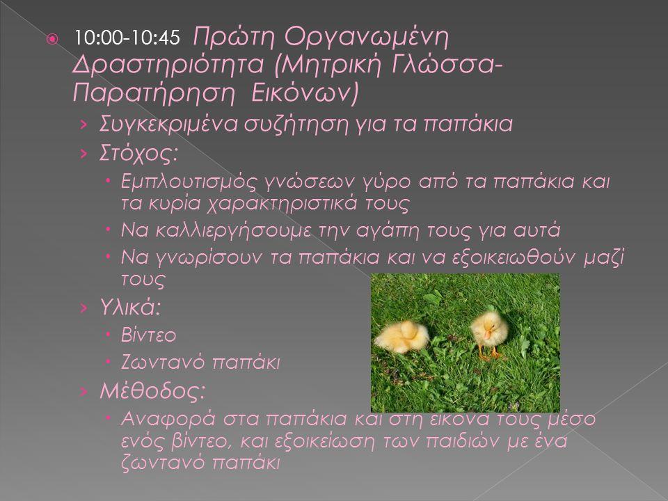 10:00-10:45 Πρώτη Οργανωμένη Δραστηριότητα (Μητρική Γλώσσα- Παρατήρηση Εικόνων) › Συγκεκριμένα συζήτηση για τα παπάκια › Στόχος:  Εμπλουτισμός γνώσεων γύρο από τα παπάκια και τα κυρία χαρακτηριστικά τους  Να καλλιεργήσουμε την αγάπη τους για αυτά  Να γνωρίσουν τα παπάκια και να εξοικειωθούν μαζί τους › Υλικά:  Βίντεο  Ζωντανό παπάκι › Μέθοδος:  Αναφορά στα παπάκια και στη εικόνα τους μέσο ενός βίντεο, και εξοικείωση των παιδιών με ένα ζωντανό παπάκι