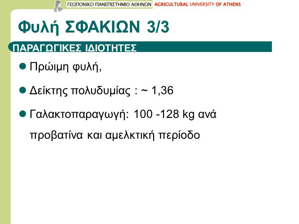 ΠΑΡΑΓΩΓΙΚΕΣ ΙΔΙΟΤΗΤΕΣ Πρώιμη φυλή, Δείκτης πολυδυμίας : ~ 1,36 Γαλακτοπαραγωγή: 100 -128 kg ανά προβατίνα και αμελκτική περίοδο Φυλή ΣΦΑΚΙΩΝ 3/3