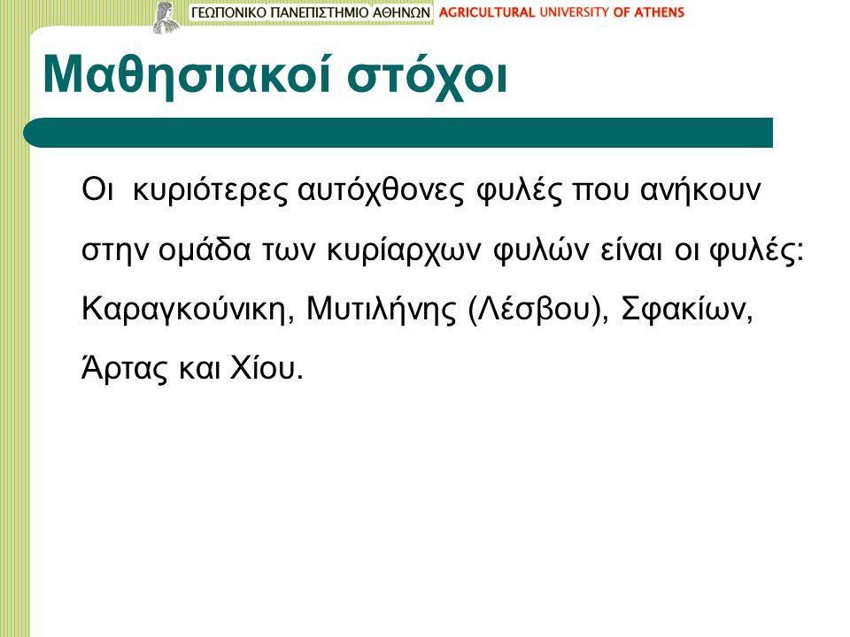 Μαθησιακοί στόχοι Οι κυριότερες αυτόχθονες φυλές που ανήκουν στην ομάδα των κυρίαρχων φυλών είναι οι φυλές: Καραγκούνικη, Μυτιλήνης (Λέσβου), Σφακίων, Άρτας και Xίου.