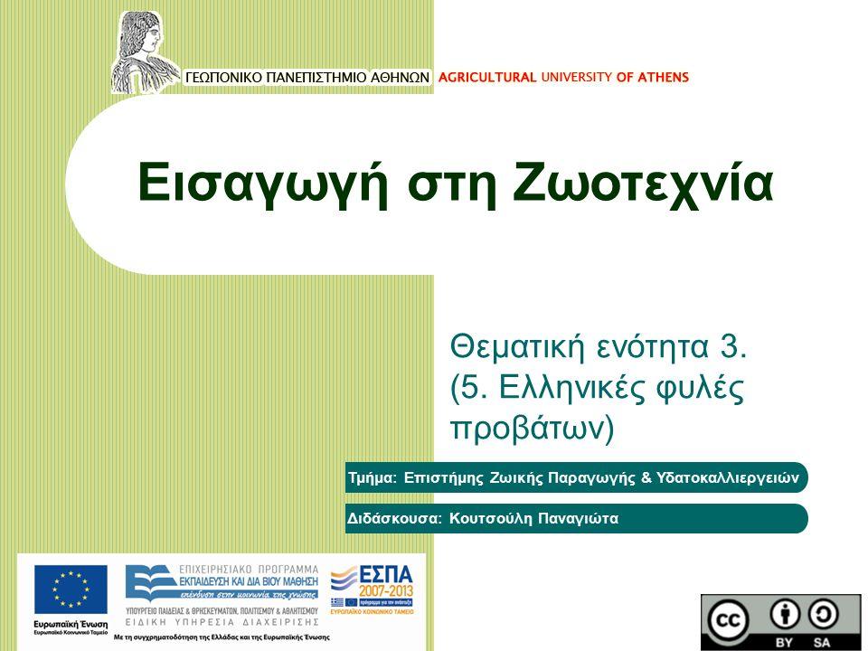 Αντικειμενικοί στόχοι του μαθήματος Η γνωριμία με τις σημαντικότερες ελληνικές φυλές προβάτων (προέλευση, περιγραφικά στοιχεία και παραγωγικά χαρακτηριστικά τους).