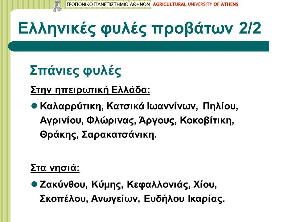 Ελληνικές φυλές προβάτων 2/2 Σπάνιες φυλές Στην ηπειρωτική Ελλάδα: Καλαρρύτικη, Κατσικά Ιωαννίνων, Πηλίου, Αγρινίου, Φλώρινας, Άργους, Κοκοβίτικη, Θράκης, Σαρακατσάνικη.
