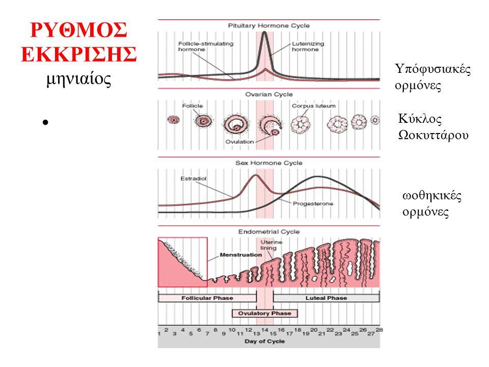 ΡΥΘΜΟΣ ΕΚΚΡΙΣΗΣ μηνιαίος Υπόφυσιακές ορμόνες Κύκλος Ωοκυττάρου ωοθηκικές ορμόνες
