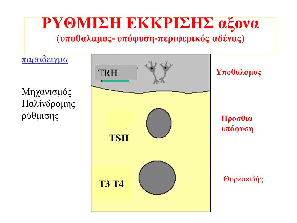 ΡΥΘΜΙΣΗ ΕΚΚΡΙΣΗΣ αξονα (υποθαλαμος- υπόφυση-περιφερικός αδένας) TRH TSH T3 T4 παραδειγμα Υποθαλαμος Προσθια υπόφυση Θυρεοειδής Μηχανισμός Παλίνδρομης ρύθμισης