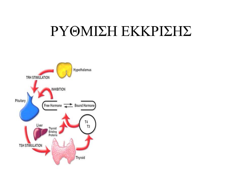Αφορά πιο πολύπλοκη ρυθμιση στην οποία συμμετεχουν η παραθορμόνη (PTH) και η βιταμίνη D ΡΥΘΜΙΣΗ ΕΚΚΡΙΣΗΣ Ασβεστιου PTH