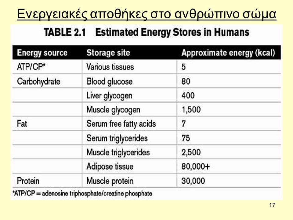 17 Ενεργειακές αποθήκες στο ανθρώπινο σώμα