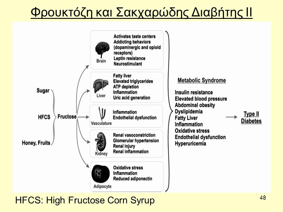 48 Φρουκτόζη και Σακχαρώδης Διαβήτης ΙΙ HFCS: High Fructose Corn Syrup