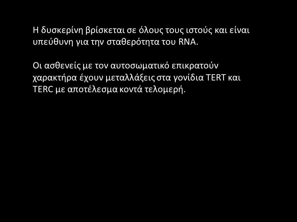 Η δυσκερίνη βρίσκεται σε όλους τους ιστούς και είναι υπεύθυνη για την σταθερότητα του RNA. Οι ασθενείς με τον αυτοσωματικό επικρατούν χαρακτήρα έχουν