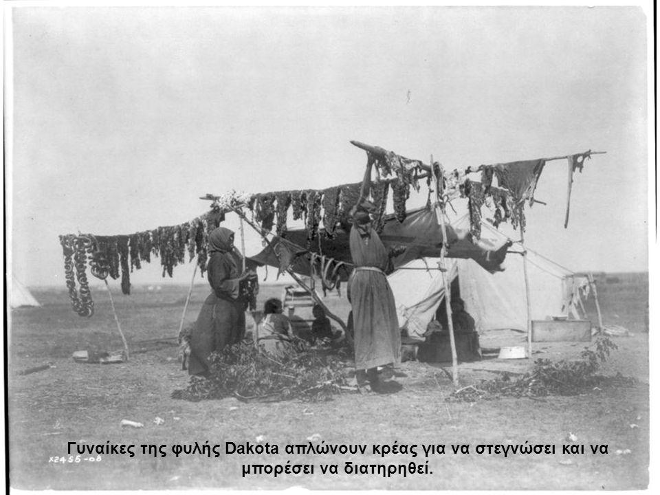Γυναίκες της φυλής Dakota απλώνουν κρέας για να στεγνώσει και να μπορέσει να διατηρηθεί.