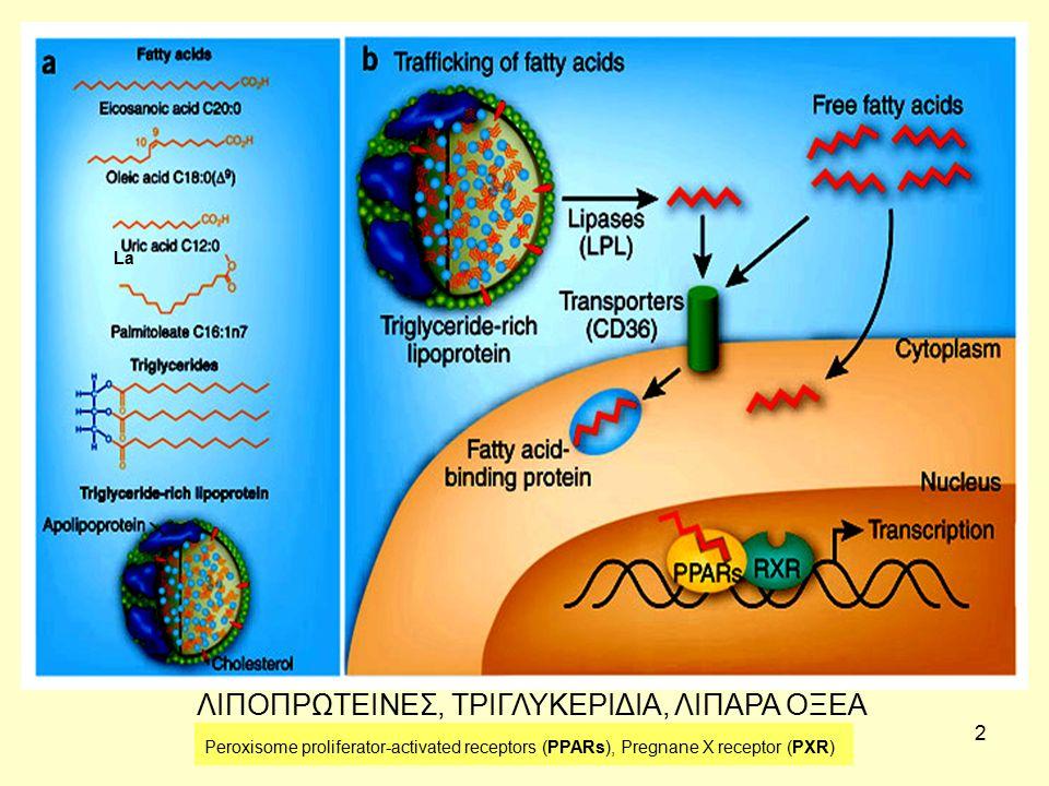 3 ΣΥΝΟΠΤΙΚΟΣ ΜΕΤΑΒΟΛΙΣΜΟΣ ΤΩΝ ΛΙΠΟΕΙΔΩΝ Οι μεταβολικές πορείες της βιοσύνθεσης και αποικοδόμησης : Μεταβολισμός λιποπρωτεϊνών, Μεταβολισμός μονο-, δι- και τρι-γλυκεριδίων, Μεταβολισμός λιπαρών οξέων, Μεταβολισμός κετονικών σωμάτων, στεροειδών, Μεταβολισμός πολικών λιπών (π.χ.